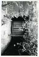 Beauvechain / Hamme-Mille (Brabant Wallon) - Moulin/molen - Photo Véritable 9x13 Cm Du Moulin De Valduc (1979) - Places