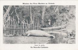 Océanie - Nouvelle-Calédonie - Pêche D'un Lamentin - Missions 6 Rue De Bagneux Paris VI - New Caledonia