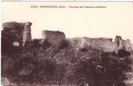 Montluel Ruines De L'ancien Chateau - Montluel