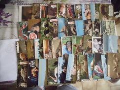 LOT DE 40 CARTES HUMORISTIQUES ...ANIMAUX - Cartes Postales