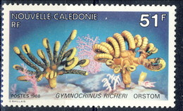 Nouvelle Caledonie 1988 Serie N. 557 MNH Cat. € 2.50 - Nuovi