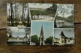 41, EN SOLOGNE, MULTI-VUES, CHATEAU DESALBRIS,EGLISE DE LAMOTTE BEUVRON, LES MUIDS A LA FERTE SAINT AUBIN - France