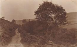 COLWYN BAY -BLACKBERRY MOUNTAIN.  JUDGES - Denbighshire