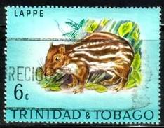 Paca, Trinidad & Tobago Stamp SC#198 Used - Trinité & Tobago (1962-...)