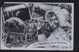 TRAVAIL DU   CHAMPAGNE - France