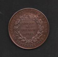 """Medaille  En Bronze . VILLE DE VERNON EURE . """"Concours De Pêche à La Ligne Le 9 Septembre 1896"""" - Professionnels / De Société"""