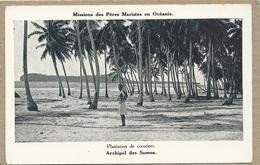 ARCHIPEL  DES  SAMOA   PLANTATION DE COCOTIERS - Samoa
