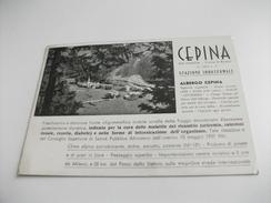 ALBERGO HOTEL CEPINA DI VALDISOTTO ALTA VALTELLINA CONCA DI BORMIO - Alberghi & Ristoranti