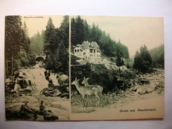 Carte Postale Allemagne Gruss Aus  Raumünzach  (Petit Format Circulée) - Forbach