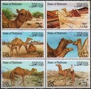 BAHRAIN 1989 Block 6 V Used   Animals   Chameaux  Kamele  Dromedare Camels - Sellos