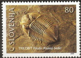 Slovenia 2000, Trilobite Fossil, Paladin Kaskia Bedici 1 Value  MNH