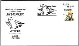 AVE DEL PARAISO - BIRD OF PARADISE. Strelitzia Reginae. SPD/FDC Madrid 2006 - Végétaux