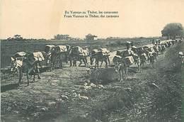 A-17-1166 :   TIBET.  DU YUNNAN AU THIBET LES CARAVANES. FROM YUNNAN TO THIBET THE CARAVANS - Tibet