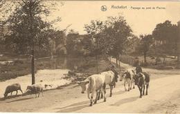 ROCHEFORT    ---   Paysage Au Pont De Pierres - Rochefort