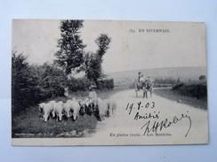 CPA 58 En Nivernais, En Pleine Route: Les Moutons, Animé Avec Attelage, En 1903 - France