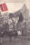 TRELLY  50  ( LA TOUR DE SAINT LOUET  ) ANIMATION SCENE RURALE  CHEVAL - Saint Pierre Eglise