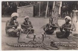 Ceylon Snake Charmers Incantatori Di Serpenti Mestieri - Cartoline