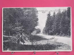 69 - Les Echarmeaux - Bois De Sapin - 1905 - Scans Recto-verso - France