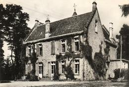 SAINT PARDOUX LA CROIZILLE..... Chateau De THEIL... - Sonstige Gemeinden