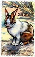 Libia - Mint Stamp MNH** - Lapin Rabbit Kaninchen Conejo Coniglio Faune Fauna Mammals