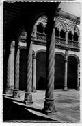 VALLADOLID - Museo N. De Escultura - Patio Del Colegio De San Gregorio Columnas - Valladolid