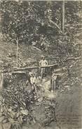 A-17-1211 : COLONIE DE SURINAME - Surinam