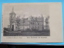 Le Château De RHODE ST. PIERRE ( Nels Série 36 - N° 20 ) Anno 19?? ( Zie Foto´s Voor Detail ) !! - Holsbeek