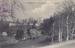 Beaumont - Vue Prise Du Banc Des Roquettes (Arthur Mertens) - Beaumont