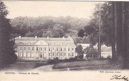 Teuven - Château De Sinnieh(sic) Sinnich (Edit. Jonckers,précurseur, 1903) - Fourons - Voeren