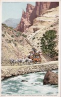 Wyoming Stagecoach Along Gardiner River Gardiner River Canyon Yellowstone Park Detroit Publishing - Yellowstone