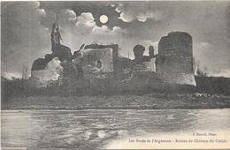 DEPT 22 - BRETAGNE - Les Bords De L'Arguenon - Ruines Du Chateau Du Guildo - ENCH1612 - - France