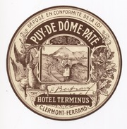 63 - CLERMONT FERRAND  - Hotel TERMINUS -  Document Publicitaire - - Etiketten Van Hotels