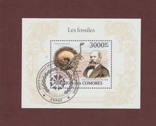 FOSSILES - Othniel Charles MARSH - Premier Jour Des COMORES