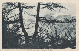 9806) CHAMPOLUC CATENA DEL MONTE ROSA GHIACCIAIO NON VIAGGIATA 1920 CIRCA - Italia