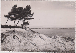 CARTE PHOTO A BLANC, 83,VAR,SAINT AYGULF - Saint-Aygulf