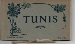 TUNIS  Carnet 24 Cartes - Tunisie