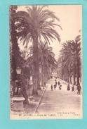 Old/Antique? Postcard Of Hyères, Provence-Alpes-Cote D'Azur, France,Posted ,Q39. - Provence-Alpes-Côte D'Azur