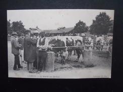LISIEUX - Le Marché Aux Bestiaux - Markets