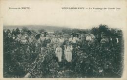 21 VOSNE ROMANEE / La Vendange Des Grands Crus / TOP BELLE CARTE RARE VENDANGE - France
