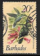 Barbados, Scott # 501 Used Birds, 1979 - Barbados (1966-...)