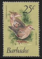Barbados, Scott # 502 Used Birds, 1979 - Barbados (1966-...)