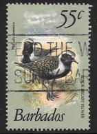 Barbados, Scott # 506A Used Birds, 1981 - Barbados (1966-...)
