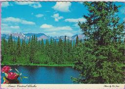 Usa °° Alaska - Central Alaska Summer Slendor - Dentelée °°° NEUVE - Andere