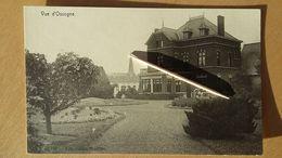 HAVELANGE _ Vue D'Ossogne 1918