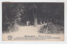 CHATEAU DE CHEVREMONT / CHEMIN DE CROIX - Other