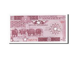 Somalie, 5 Shilin = 5 Shillings, 1982-1983, KM:31b, 1986, NEUF - Somalia