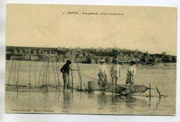 80 ONIVAL Pecheur Et Fillets Et Bosselle à Marée Basse 1910  /D02-2017 - Onival