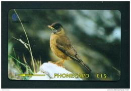 FALKLAND ISLANDS - GPT Magnetic Phonecard Bird/Thrush - Falkland Islands