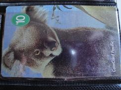Magnetic Phonecard From Nauru - Koala