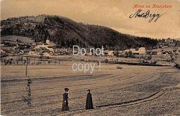 Neudegg Mirna Na Kranjskem 1909 - Slovenia